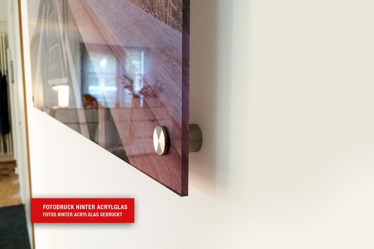 hochwertiger fotodruck und bilderdruck auf acrylglas oder anderen materialien. Black Bedroom Furniture Sets. Home Design Ideas